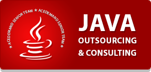 ACEDEMAND as a JAVA Consultant